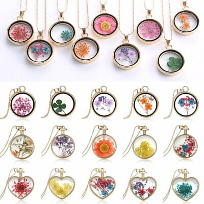 Round Glass Floating Locket Pendant Real Dried Pressed Flower Sweater Necklace
