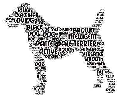 Patterdale Terrier Art Print Word Art A4 A3 Mothers Day Gift Personalised Option