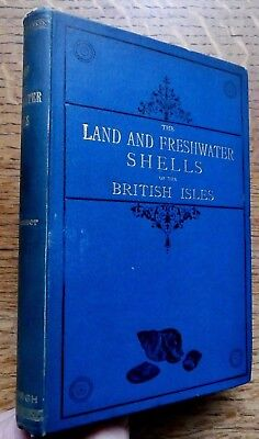 The Land & Freshwater Shells of The British Isles 1880 R. Rimmer VGC illustrated