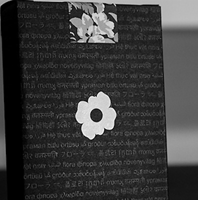 Limited Edition Black Flora Playing Cards by Paul Robaia - LIMITED
