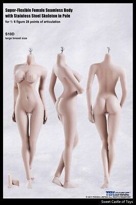 1/6 TBLeague Female Seamless Body Pale Large Bust S10D w/Steel Skeleton Phicen