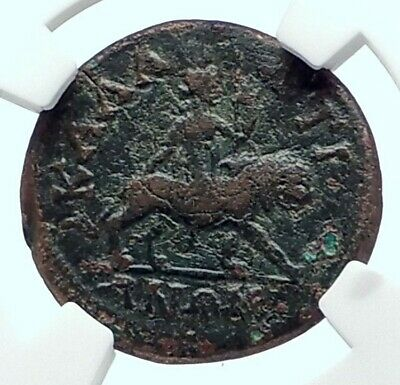 LUCILLA Authentic Ancient Kallatis Thrace Roman Coin DIONYSUS PANTHER NGC i77667