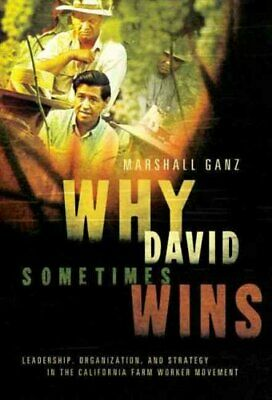 Why David Sometimes Wins Leadership, Organization, and Strategy... 9780199757855
