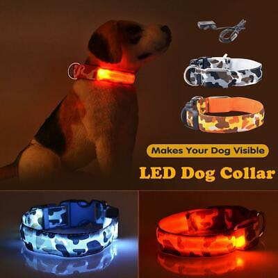 USB Rechargeable LED Dog Collar Glow Flashing Light Up Safety Pet Traction Belt