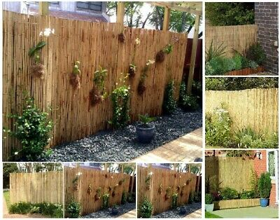 Natural Peeled Reed Fence Garden Privacy Screen Wall Decoration Outdoor 4m Roll