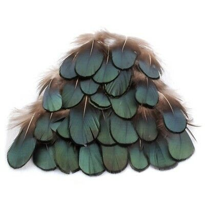 50pcs Green Amherst Pheasant Feather for Crafts DIY Decorative Handicrafts