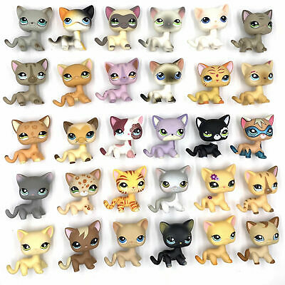 Littlest Pet Shop Short Hair Cat series lps 1 pcs random choice
