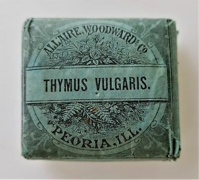 1890 antique UNUSED THYMUS VULGARIS QUACK MEDICINE Allaire Woodward FLATULENCE