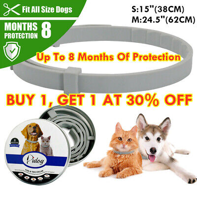 Kills Flea&Tick Collar 8 Month Protection Adjustable for Small Medium Large Dogs