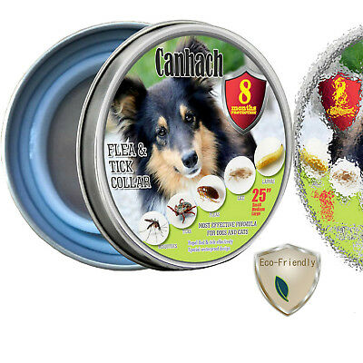 Dog-Flea-and-Tick-Collars-Collar-Pet-Essential-Oil-Pest-Control-And-Prevention