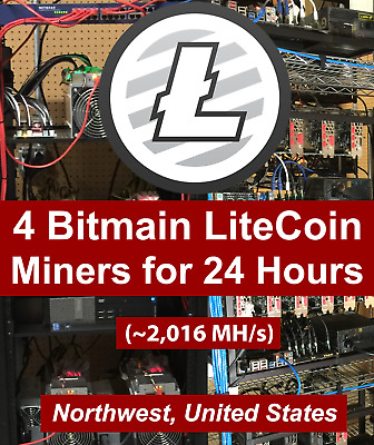 FOUR Antminer L3+ Litecoin Miners / 24 hour Mining Contract / Rental  2,016 MH/s