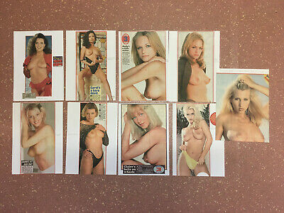 Page 3 Girl Clippings / Cuttings Vintage Page 3 Glamour Art / Nudes (Lot 17)