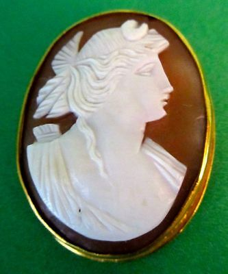 Antique Shell Cameo Victorian/ Early Edwardian Hand Carved Pin Brooch 1850-1910