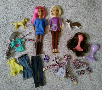 Liv Dolls Lot with Clothes, Dogs, Shoes, Wigs, by Spinmaster