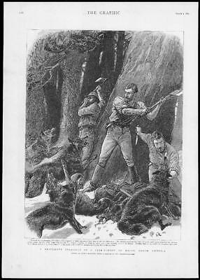 1893 Antique Print - USA MAINE LUMBERMEN IN STRUGGLE WOLVES PINE FOREST (121)