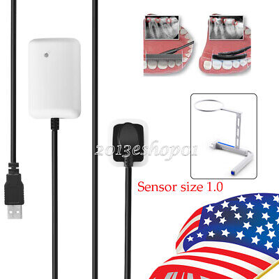 Electric Dental Calculus Remover Sonic Tartar Scaler Scraper Tooth Stain Cleaner