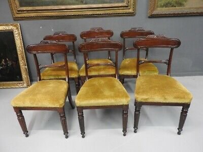 Group of 6 Antique Chairs English Mahogany Sideboard Age 800 London