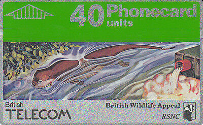 British TELECOM  Phonecard 40 units British Wildlife Appeal 026G