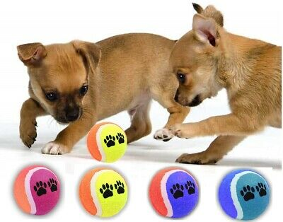 AQS Coloured Tennis Balls For Pets Puppy Play Dogs Toys Bouncing Training Ball