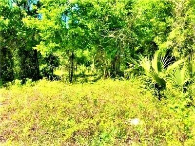 1.13 Acres Downtown Deltona - Volusia County Florida - Off N Normandy Blvd