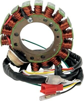 Ricks Motorsport Electric Ersatz Stator (Hot) 21-616h