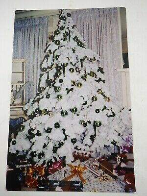 "Flocked Christmas Original Photo By Mark James Powers 70's Color 11"" x 17"""