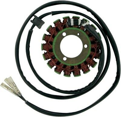 Ricks Motorsport Electric Ersatz Stator 21-301