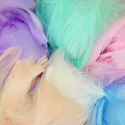 100pcs Natural Goose Feathers 8-12 Cm Swan Plume Carnivalr Craft Gift Best Sale