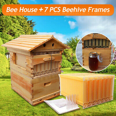 7-Frame Free Flow Beehive Bee Hive Frame 2019 Upgraded + TOP Cedarwood Box House