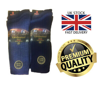New Mens 6 Pair Value Pack Aler Lambswool Blend Assorted Blue Mix Socks