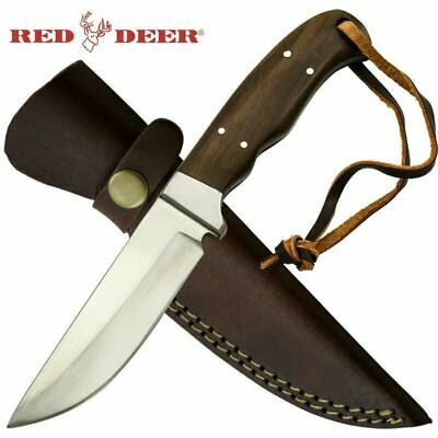 """8.5"""" Red Deer Full Tang Pakka Wood Hunting Knife with Leather Sheath"""
