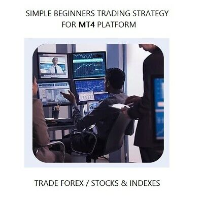 Forex Trading Strategy Simple Beginners MT4 System Template Indicator Trade FX