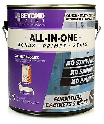 BEYOND PAINT GAL Licor All In1 Paint BP14