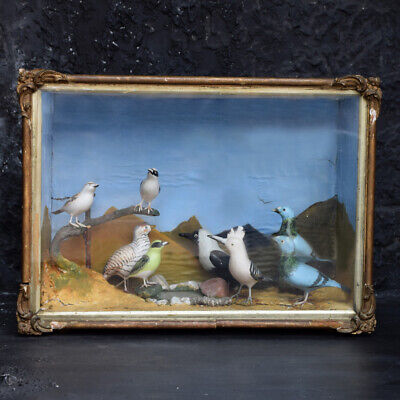 Mid-20th Century Hand Carved Folk-art Bird Diorama with Authentication Stamp.