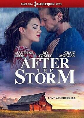 AFTER THE STORM (Madeline Leon Bo Yokely Carlisle J. Williams) New DVD