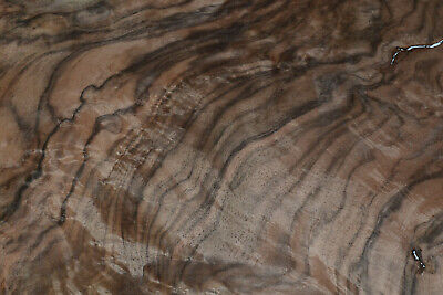 1 pair Walnut Burl Raw Wood Veneer Sheets 14 x 16 inches 1/42nd           8631-2