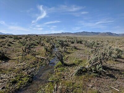 617 Acres Rural Nevada Ranch Land Buildable, Creek, 2wd Access, Owner Financing!