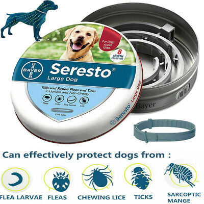 Bayer Seresto Anti Flea and Tick Collar For Large Dogs Long-Term Protection Belt