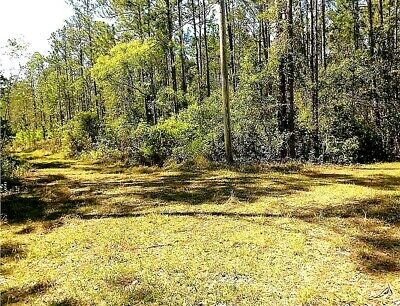 11.5 Acres - Forest View Road, DeLand - Lake County, Florida