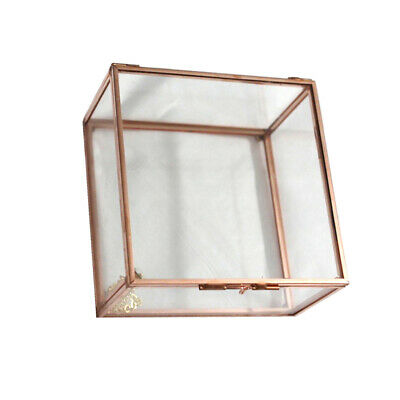Clear Glass Cuboid Geometric Terrarium Jewelry Box Succulent Plants Box L