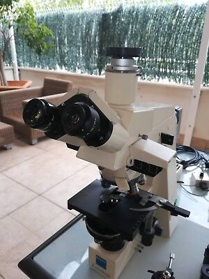 Zeiss Axioskop Fluorescence and Bright Field Microscope