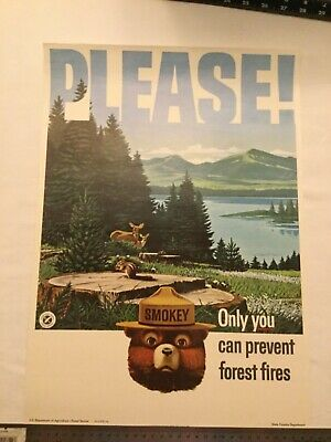 Vintage Smokey the Bear Forest Service Poster PLEASE Only You Can Prevent 1965