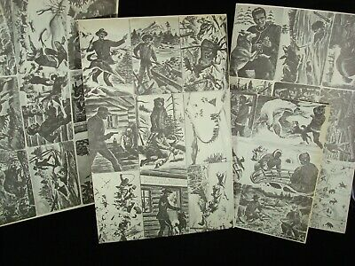 Sgt. Preston of the Yukon Trading Cards #1-36 uncut and uncolored