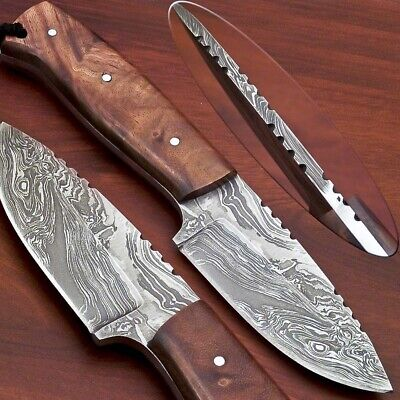 Hand Forged Damascus Steel Full Tang Knife-Natural Wood-C-2181