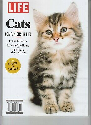 Cats Life Magazine Special 2019 Companions In Life