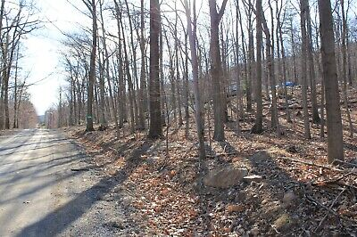 Beautiful 1/4 Lot in Northern, VA Ready to Build On! NO Reserve Auction!