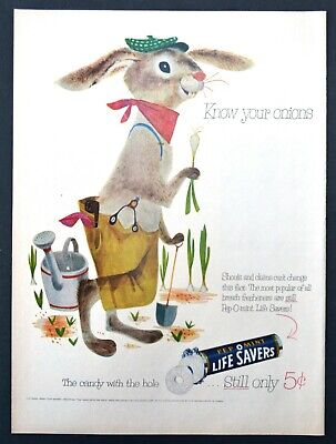 1955 Lifesavers Candy Art Decor PRINT AD Original Rabbit Know your onions