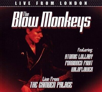 The Blow Monkeys - Live from the Camden Palace, London (2016)  CD NEW SPEEDYPOST
