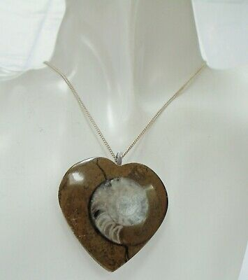 Good vintage polished ammonite fossil heart pendant + sterling silver chain