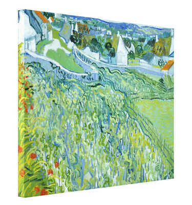 Vincent van Gogh Vineyards with a View of Auvers Painting Giclee CANVAS Print LG